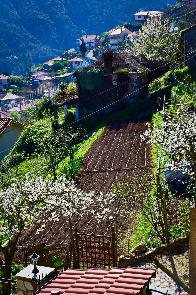 Βλέπετε φωτογραφίες από : Πάσχα στο Χωριό
