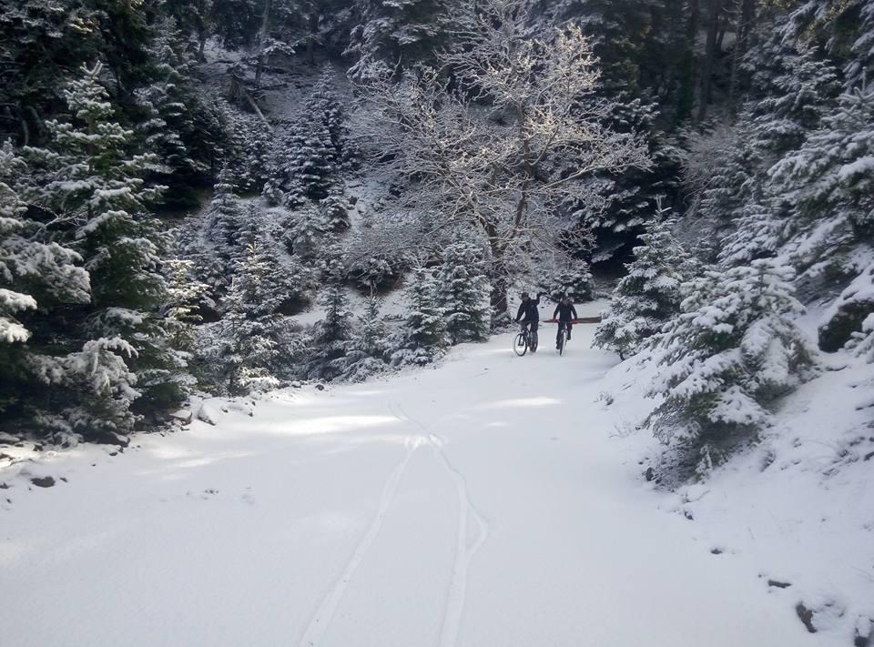 Βλέπετε φωτογραφίες από : Ποδηλάτες στο Τρίκορφο